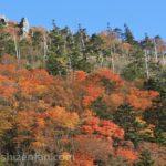 剣山(徳島県)の紅葉