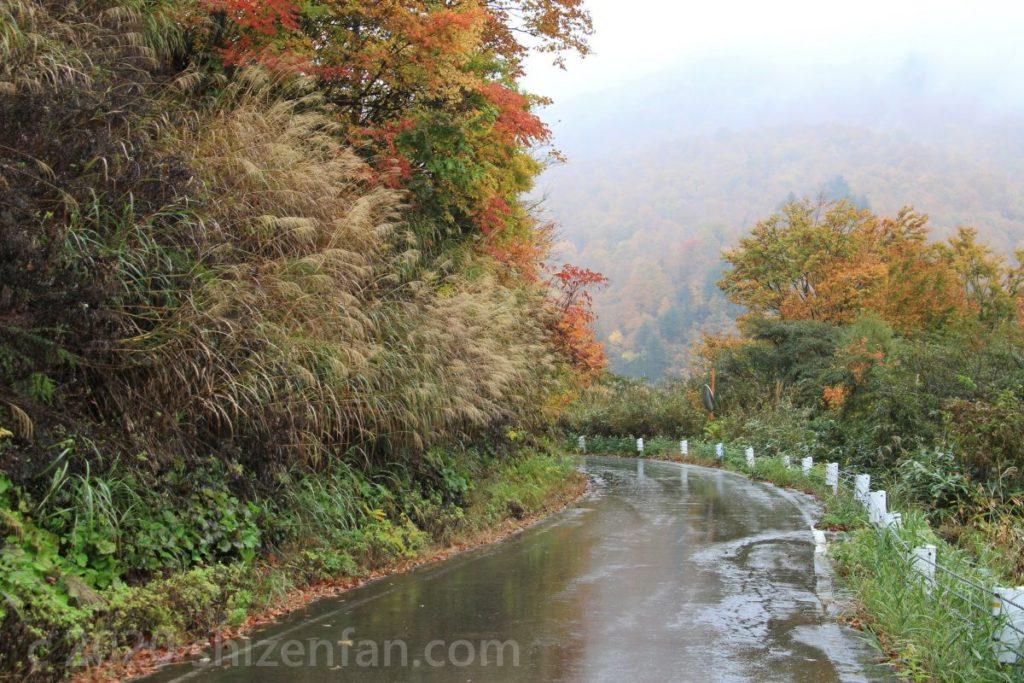 秋の雨に濡れた奥只見湖沿いの国道
