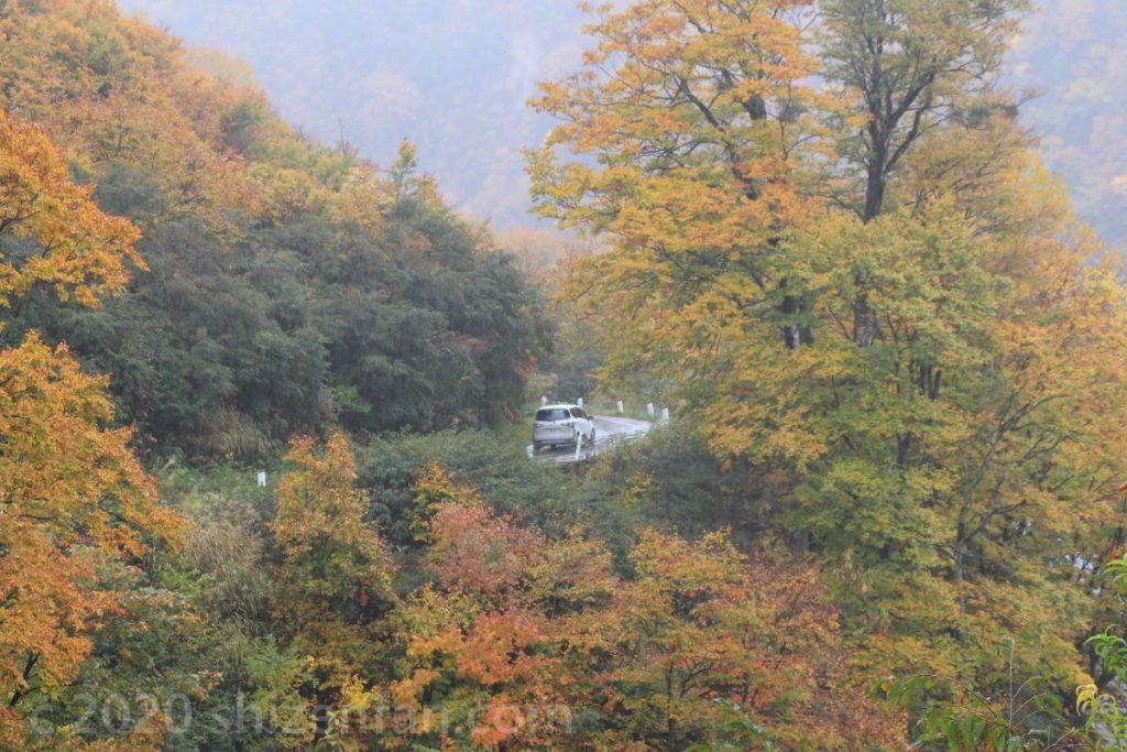 奥只見湖沿い国道352号のカーブを走る白い車