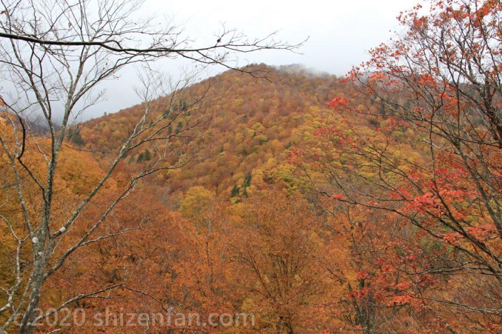 モーカケの滝展望台より オレンジに染まる秋の山々