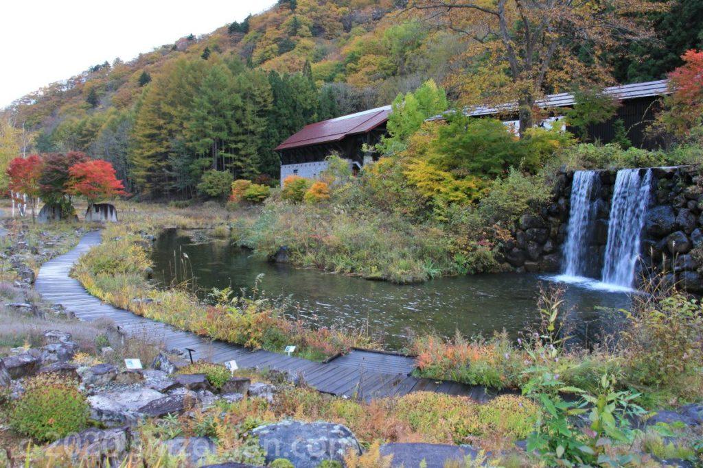 10月下旬のミニ尾瀬公園内の様子