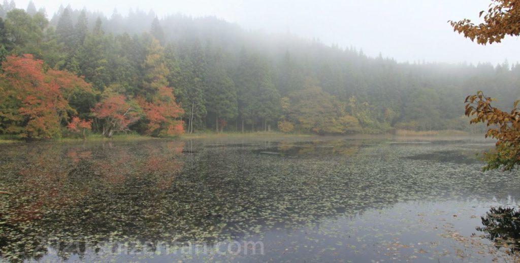 朝霧に包まれた静かな沼の紅葉