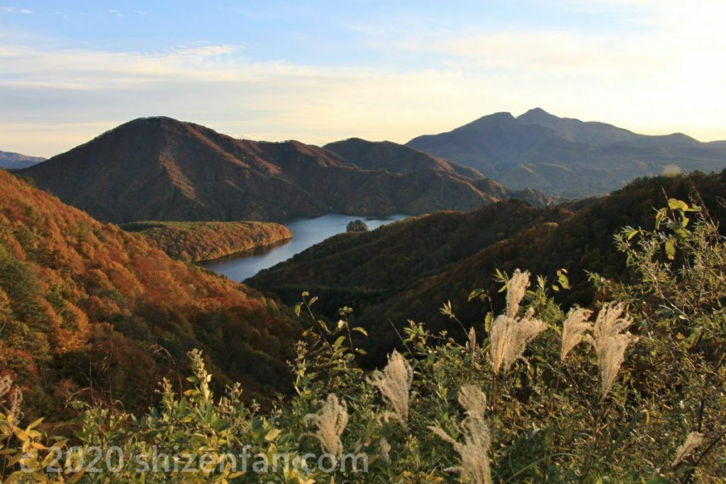 レークラインから望む夕暮れの秋元湖とススキ