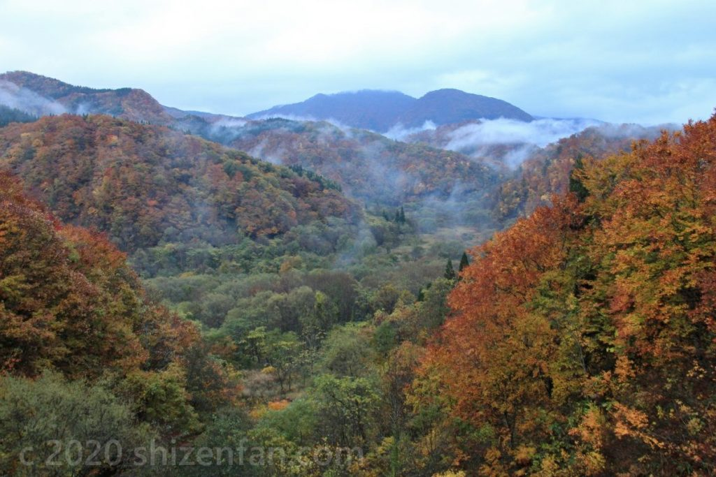 宝仙湖周辺の山並みと霧