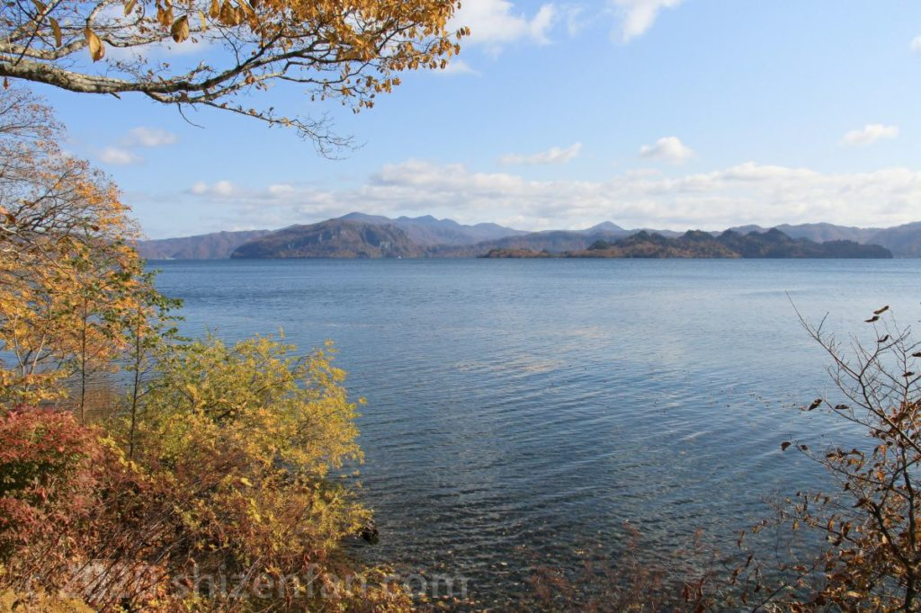 秋の十和田湖(西湖畔遊歩道より)