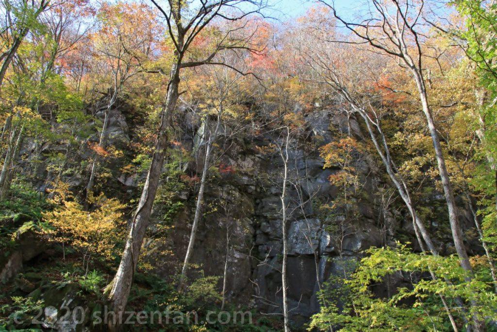 奥入瀬渓流・遊歩道から見上げる岩壁
