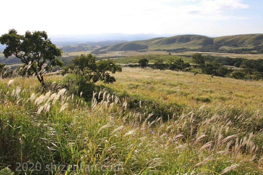 久住高原展望台から眺めるススキ野原と高原の風景