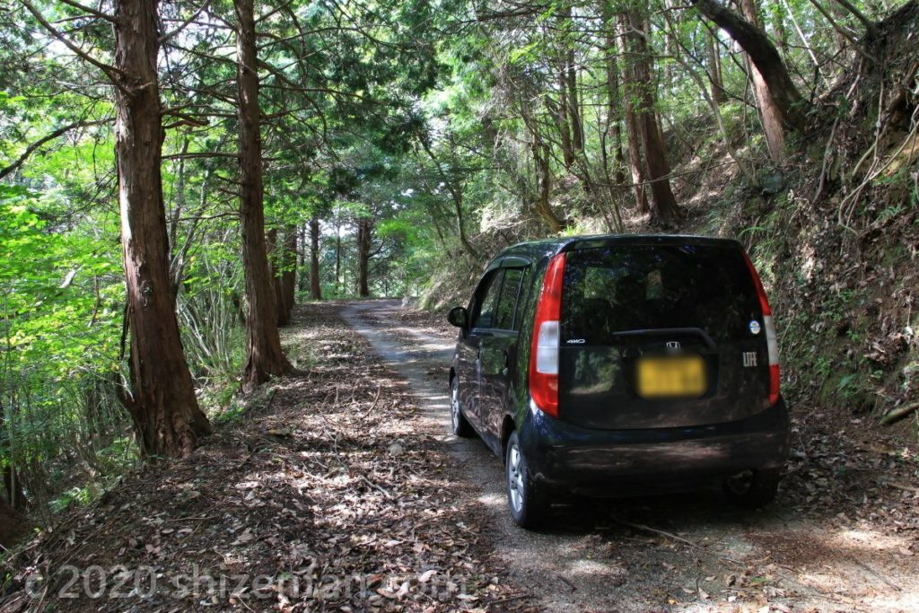 臼杵・水ヶ城展望台への道路