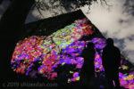 チームラボ福岡城址光の祭